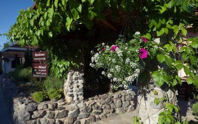 mirjana rastoke restaurant and bar flowers